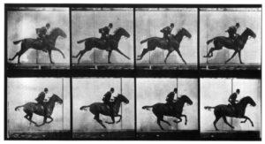 Who was Eadweard Muybridge